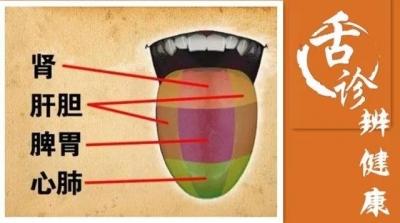《饮食养生汇》如何用舌苔辨健康
