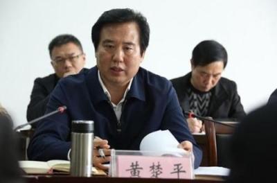 黄楚平强调 把国务院大督查反馈意见整改落实到位