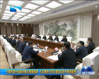 王晓东督办省政协重点提案强调 扎实推进自贸区建设走在中西部前列