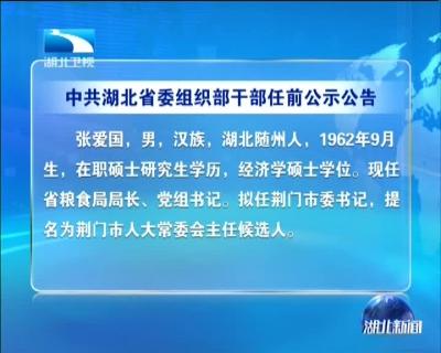 中共湖北省委组织部干部任前公示公告
