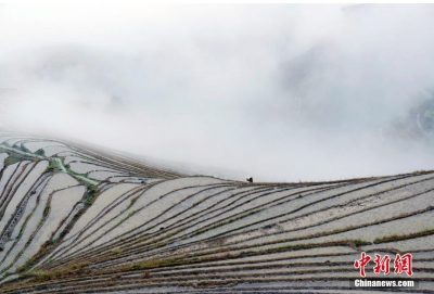 广西龙脊梯田:云雾缭绕美如画