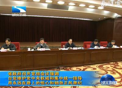 湖北省政府召开党组会议强调 自觉维护党中央权威和集中统一领导 用永远在路上的恒心和韧劲正风肃纪
