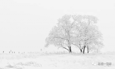 《经视一锅鲜》立冬补冬补嘴空