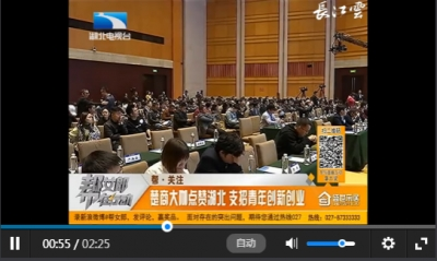 帮关注:楚商大咖点赞湖北 支招青年创新创业