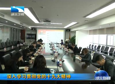 湖北省委宣讲团到各地宣讲党的十九大精神