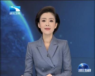 湖北各地举行南京大屠杀死难者公祭活动