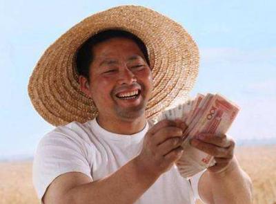 国家统计局:去年农民人均可支配收入12363元