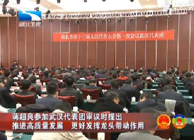 V视 | 蒋超良参加武汉代表团审议时提出 推进高质量发展 更好发挥龙头带动作用