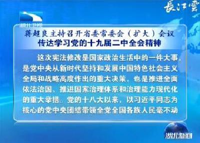 蒋超良主持召开省委常委会(扩大)会议 传达学习党的十九届二中全会精神