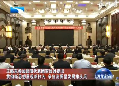 V视|王晓东参加襄阳代表团审议时提出 贯彻新思想展现新作为 争当高质量发展排头兵