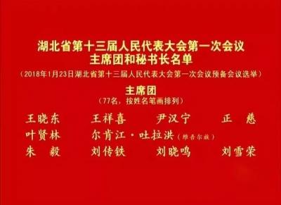 湖北省十三届人大一次会议主席团常务主席名单