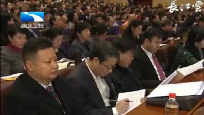 V视 | 湖北省政协十二届一次会议举行第二次大会