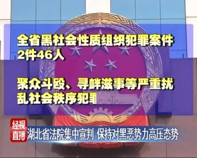 湖北省法院集中宣判 保持对黑恶势力高压态势