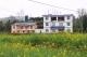 在湖北农村这10类房子可能被回收