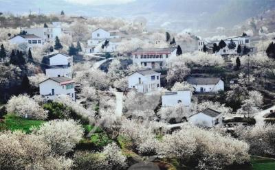 湖北3年内重点扶持这批村庄 最高奖500万!你的家乡会上榜吗?