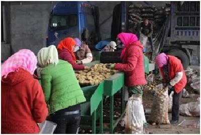 农发贷:立足特色农业,创产业扶贫新模式