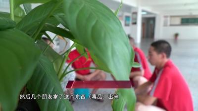 """【V视】毒品""""多宗罪""""!襄州强制戒毒所来了这样一群人...."""