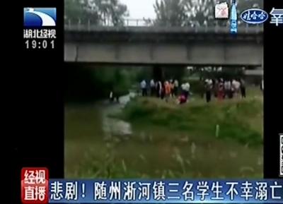 悲剧!随州淅河镇三名学生河沟边玩耍不幸溺亡
