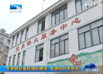 周霁调研基层组织建设 看望慰问老党员