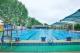 经视直播|武汉这42家游泳馆暑假免费