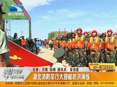 帮·关注:湖北消防举行大规模长江抗洪演练