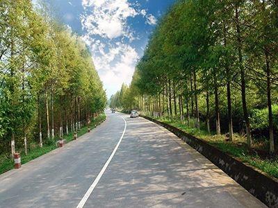 湖北全面推进美丽农村路建设