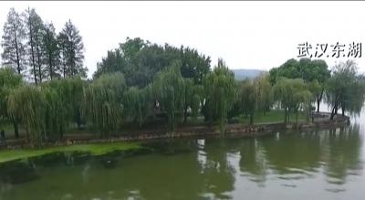 提案追踪:河湖长制 促千湖之省碧水长流