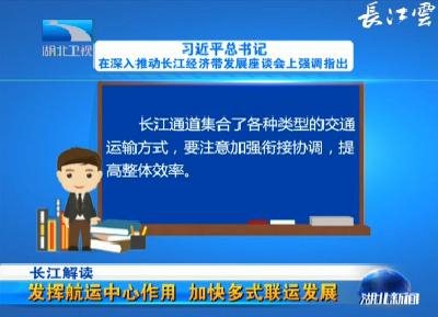 长江解读 发挥航运中心作用 加快多式联运发展(1)