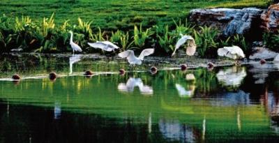 湖北20地试点省内流域横向生态补偿 每年不低于300万元