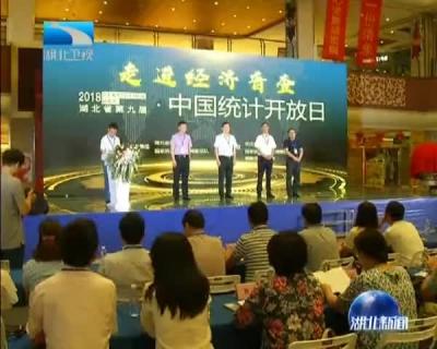 """湖北举行第九届""""中国统计开放日""""活动"""