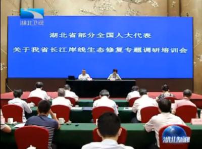 V视 | 聚焦长江生态修复 在鄂全国人大代表专题调研启动