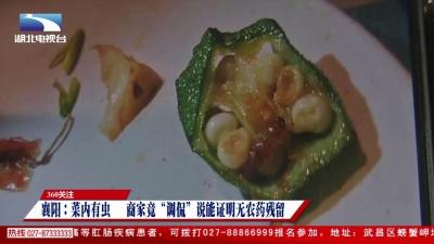 """360关注:襄阳:菜内有虫 商家竟""""调侃""""这证明无农药残留"""