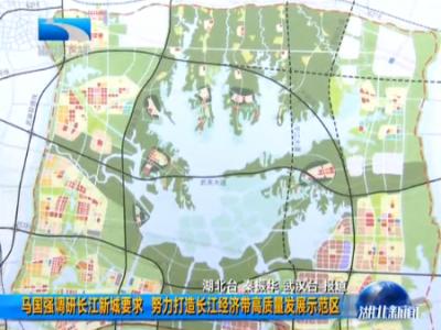 马国强调研长江新城要求  努力打造长江经济带高质量发展示范区