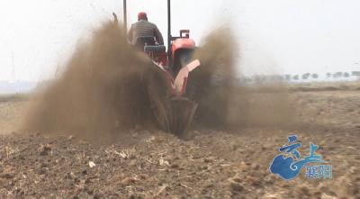 襄阳市部署秋冬种农业生产工作 已调入及签约种子1.3亿斤