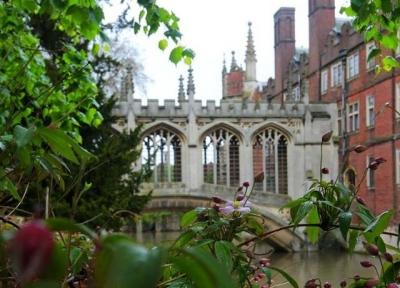 英国剑桥要限制中国游客?