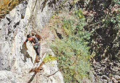 神农架国家公园:统一高效管理体制关乎试点成败