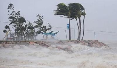 """四级飓风""""威拉""""逼近墨西哥 多地进入警戒状态"""