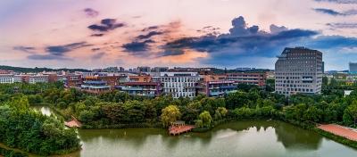 武汉打造全国首个5G智慧港口