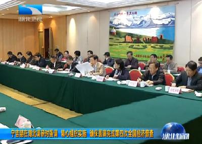 宁吉喆在湖北调研时强调 精心组织实施 确保圆满完成第四次全国经济普查