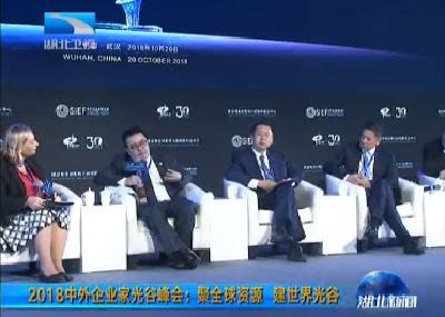 2018中外企业家光谷峰会:聚全球资源 建世界光谷