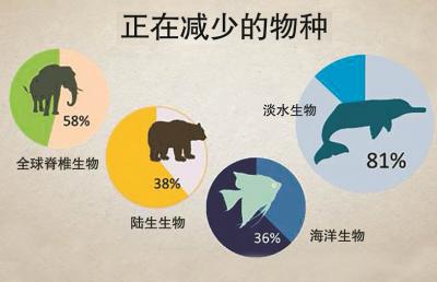 江豚濒危程度比大熊猫更严重 长江鲟连续18年未监测到自然繁殖