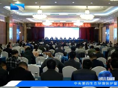 V视丨长江经济带环保产业高峰论坛在武汉举行