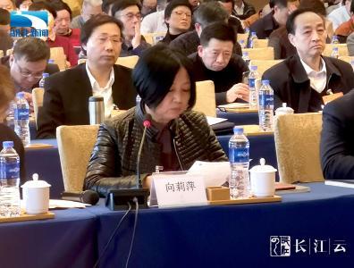 湖北省政协委员向莉萍:建议开展专项文明行动 推动湖北乡风文明