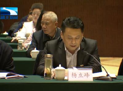 湖北省人大代表杨立峰:建议支持小池滨江新区设立综合保税区