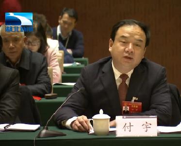 湖北省人大代表付宇:建议加大对黄冈老区的关心支持力度