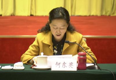 湖北省人大代表何东英:建议省检察院充分履行监督职能