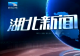 2019年1月15日湖北新闻整段