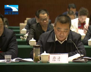湖北省人大代表詹才红:加大对蕲春中医药健康产业的支持力度