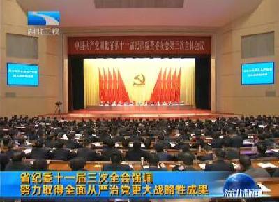 V视   湖北省纪委十一届三次全会强调 努力取得全面从严治党更大战略性成果