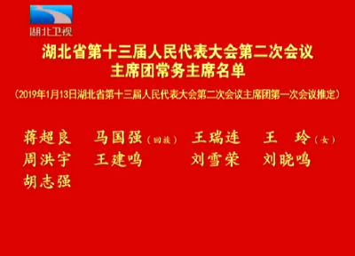 V视 | 湖北省第十三届人民代表大会第二次会议主席团常务主席名单